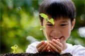 Child Planting a Tree