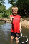 A summer camp participant enrolled in the popular Park Explorer Kids Club program explores aquatic life in a St.  Charles County Park creek.