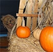 St. Charles County Parks is scaring up fun and screems this Halloween seson!