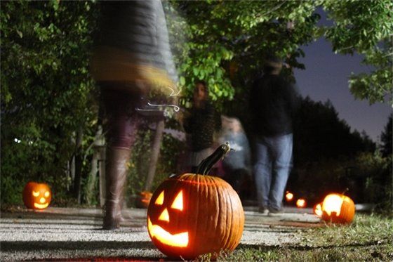 Our 2020 list of Halloween Happenings is available!