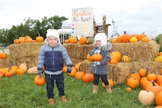 The annual Fall Harvest Festival is from 10 a.m. - 4 p.m., Saturday, Oct. 10 at Broemmelsiek Park.