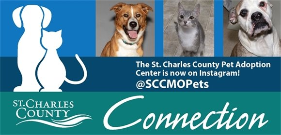 St. Charles County Connection Banner