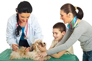 Photo of a female veterinarian giving a shot to a small dog, with its owners helping hold the animal