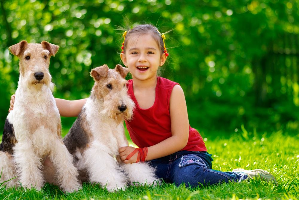 Young girl posed with 2 dogs